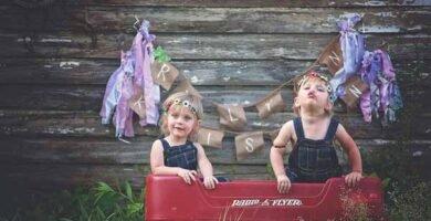 soñar con gemelos