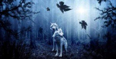 soñar con animal